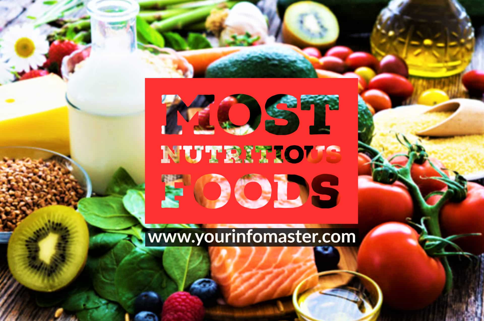 foods to eat every day, healthy foods for brain power, list of nutritious foods, most energy dense foods, most healthy vegetables, most nutritious canned foods, most nutritious dog foods, Most nutritious foods